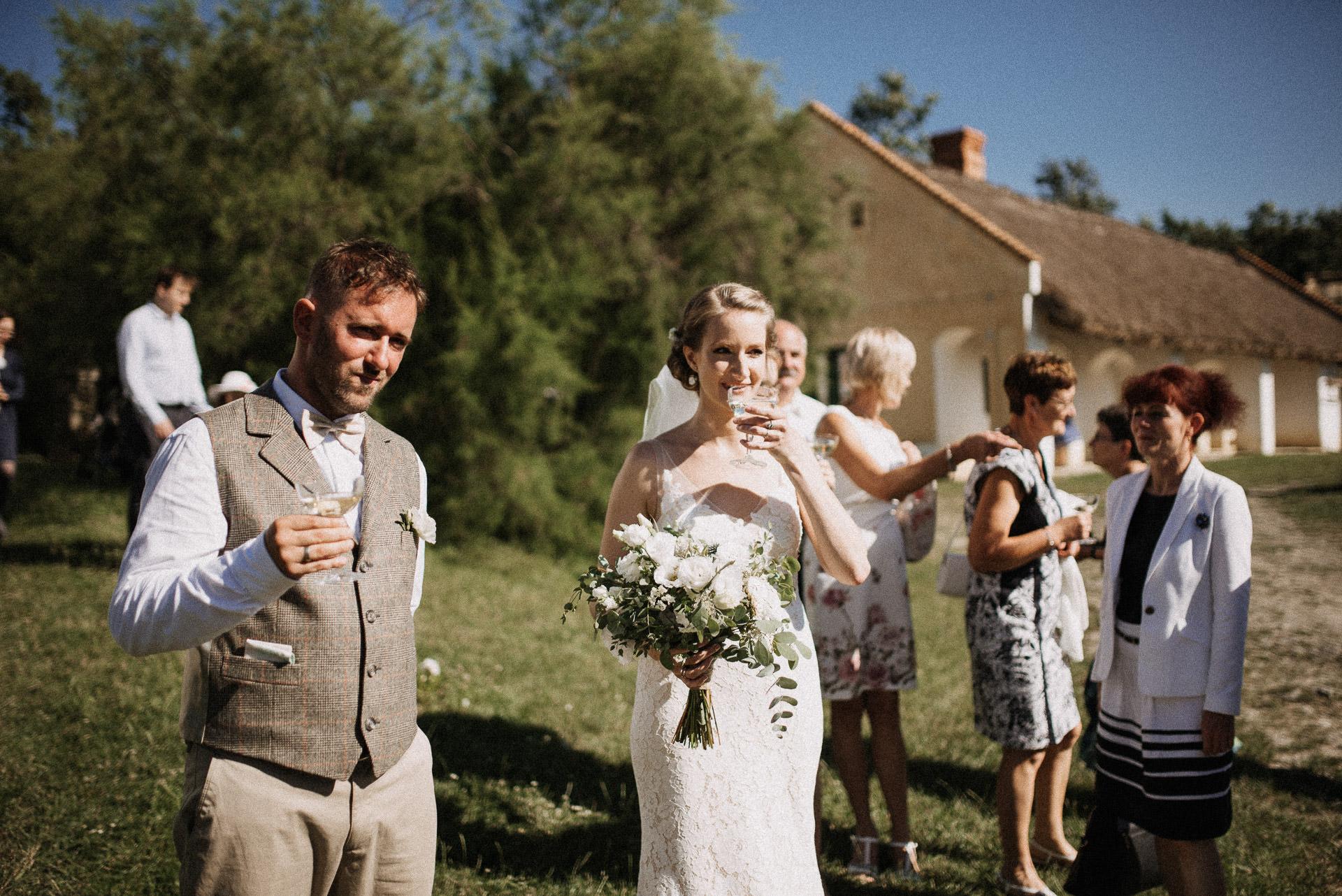 pezsgo menyasszony volegeny