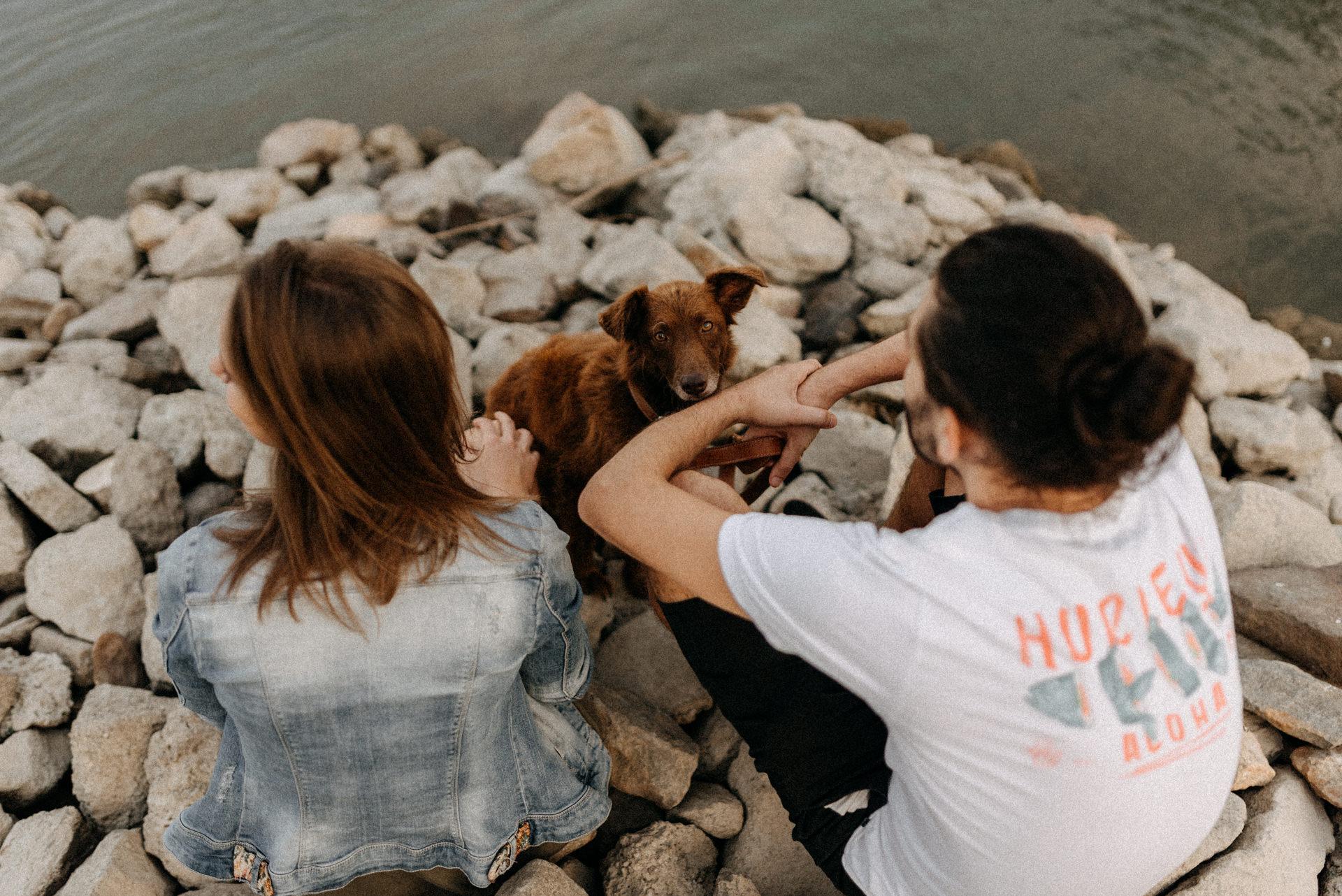 jegyes fotozas kutyaval