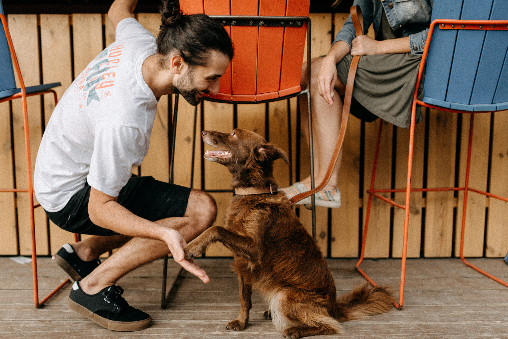 kutya pacsi dog e-session